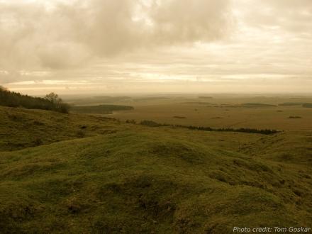 The chalk plateau of Salisbury Plain, Wiltshire, UK.